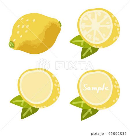 レモンの手描きイラストセット(全体、断面、フレーム) 65092355