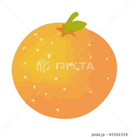 オレンジの手描きイラスト 65092359