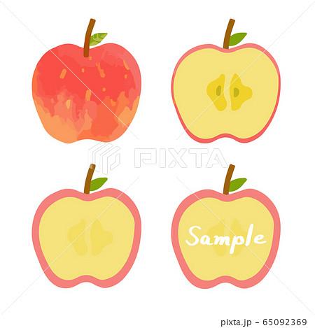 リンゴの手描きイラストセット(全体、断面、フレーム) 65092369