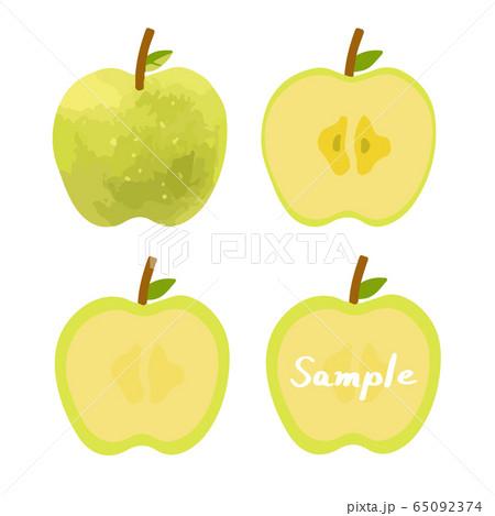 青りんごの手描きイラストセット(全体、断面、フレーム) 65092374