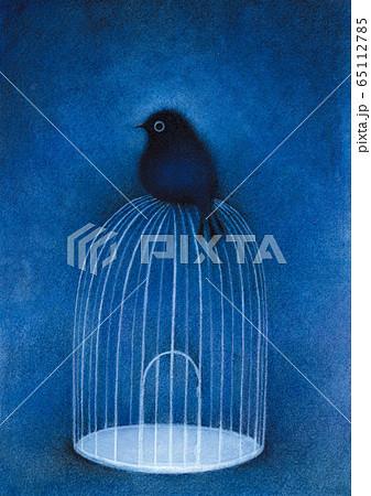 鳥かごと鳥 65112785