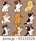色々な犬おすわりセット お手 主線あり 65133326