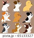 色々な犬おすわりセット お手 主線なし 65133327