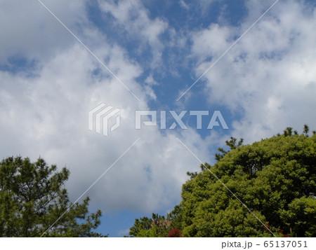 4月の青い空と白い雲 65137051