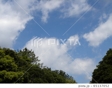 4月の青い空と白い雲 65137052