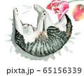 水彩で描いた裏返しになって眠る子猫 65156339