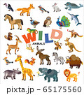 Wild animals vector set 65175560