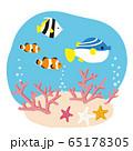 海底の珊瑚と魚たち イラスト 65178305