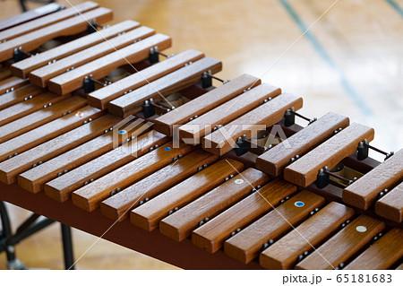 木琴 65181683