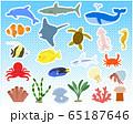 様々な海の生き物セット/ベクター 65187646