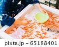 金魚すくい 65188401