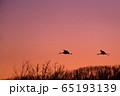 夕焼け空を飛ぶツルのシルエット 65193139