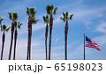 ヤシの木とカリフォルニア州の旗 65198023