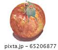 妖精 林檎 65206877