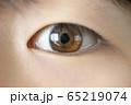 眼のアップ 65219074