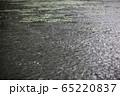 雨 雨の池 滴 65220837