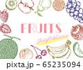 フルーツの手描きイラストセット 65235094