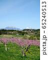 春の丹霞郷 65240513