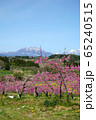 春の丹霞郷 65240515
