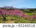 春の丹霞郷 65240516