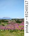 春の丹霞郷 65240517