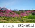 春の丹霞郷 65240518