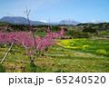春の丹霞郷 65240520
