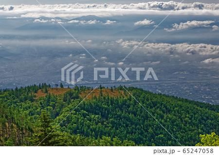 レンゲツツジ咲く甘利山山頂と韮崎方面の町並み 65247058