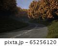 山中の道路・秋 65256120