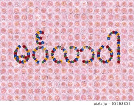 花「こんにちは(ミャンマー語)」(フラゴナール) 65262852