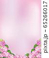 紫陽花(ピンク3) 65266017