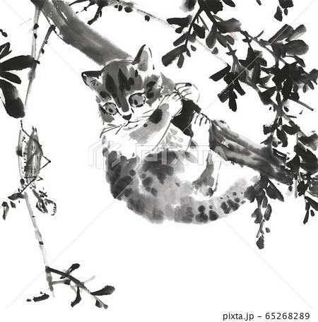 猫とカマキリ 水墨画 65268289