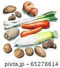 水彩で描いた根菜類7種類 65278614