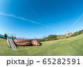鳥取県 潮風の丘とまり 初夏の風景 65282591