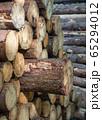 Background image, wood pile 65294012