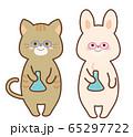 フラスコを持つ化学者のうさぎと猫 セット 65297722