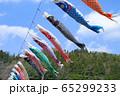 こいのぼり 長沢鯉のぼり祭り 65299233
