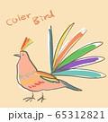 カラフルな鳥 65312821