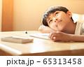 小学生の男の子 65313458