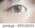 眼のアップ 65316534