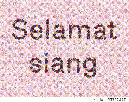花「こんにちは(インドネシア語_B)」(カリフォルニアドリーミング) 65322847