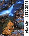 赤目四十八滝の秋 65332556