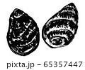 里芋 水彩画 65357447