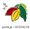 カカオ 65358176