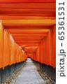 京都 伏見稲荷 千本鳥居 65361531