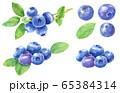 水彩ブルーベリー_素材 65384314
