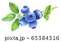 水彩ブルーベリー_枝つき 65384316