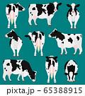 ホルスタイン種の牛 ポーズ セット 65388915