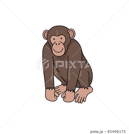 チンパンジー 65406175