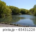 長池公園 築池(八王子市) 65431220